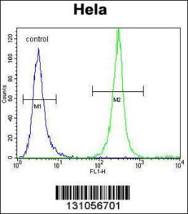 Anti-SRGN Rabbit Polyclonal Antibody (Biotin)