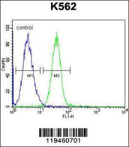 Anti-SPB4 Rabbit Polyclonal Antibody (FITC (Fluorescein Isothiocyanate))