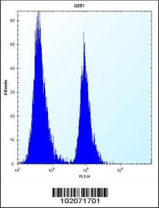 Anti-ST5 Rabbit Polyclonal Antibody (FITC (Fluorescein Isothiocyanate))