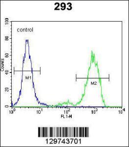 Anti-SPDYE5 Rabbit Polyclonal Antibody (AP (Alkaline Phosphatase))