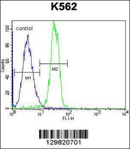 Anti-STARD6 Rabbit Polyclonal Antibody (AP (Alkaline Phosphatase))