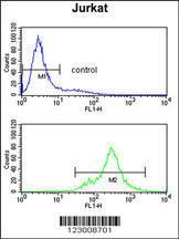 Anti-SPRED1 Rabbit Polyclonal Antibody (Biotin)