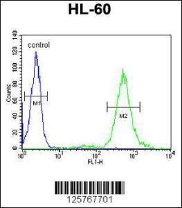 Anti-T131L Rabbit Polyclonal Antibody (AP (Alkaline Phosphatase))