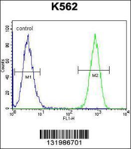 Anti-TAF4B Rabbit Polyclonal Antibody (Biotin)