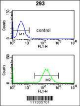 Anti-SMNDC1 Rabbit Polyclonal Antibody (FITC (Fluorescein Isothiocyanate))