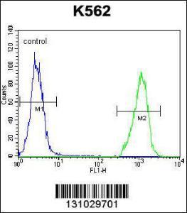 Anti-SMPD1 Rabbit Polyclonal Antibody (AP (Alkaline Phosphatase))