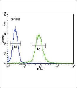 Anti-SMS Rabbit Polyclonal Antibody (FITC (Fluorescein Isothiocyanate))