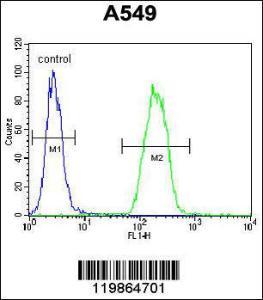 Anti-SNX24 Rabbit Polyclonal Antibody (Biotin)