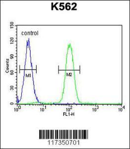 Anti-SP1 Rabbit Polyclonal Antibody (APC (Allophycocyanin))