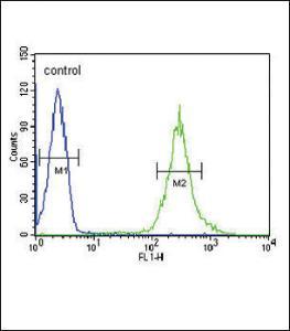 Anti-ST8SIA4 Rabbit Polyclonal Antibody (APC (Allophycocyanin))
