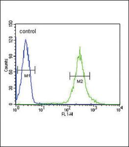 Anti-ST8SIA4 Rabbit Polyclonal Antibody (FITC (Fluorescein Isothiocyanate))