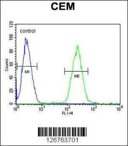 Anti-STAMBPL1 Rabbit Polyclonal Antibody (FITC (Fluorescein Isothiocyanate))