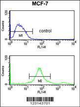 Anti-SUMO1 Rabbit Polyclonal Antibody (PE (Phycoerythrin))