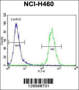 Anti-TECRL Rabbit Polyclonal Antibody (FITC (Fluorescein Isothiocyanate))