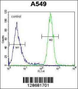 Anti-SYNCI Rabbit Polyclonal Antibody (Biotin)