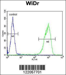 Anti-TANK Rabbit Polyclonal Antibody (APC (Allophycocyanin))