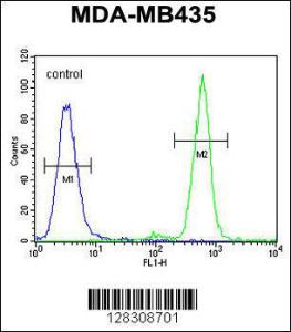Anti-TAPT1 Rabbit Polyclonal Antibody (APC (Allophycocyanin))