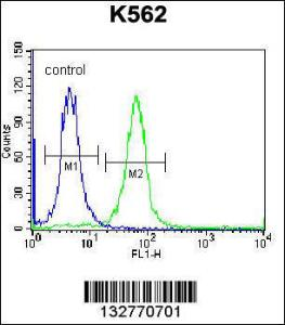 Anti-SP6 Rabbit Polyclonal Antibody (FITC (Fluorescein Isothiocyanate))