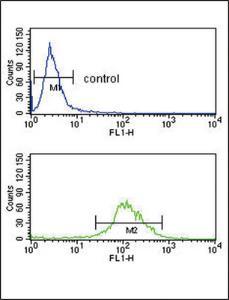 Anti-TAT Rabbit Polyclonal Antibody (AP (Alkaline Phosphatase))
